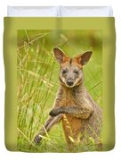 Swamp Wallaby Duvet Cover