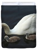Swan And Signets Duvet Cover