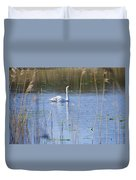 Swan At Derryallen Lough Duvet Cover