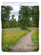 Swan Lake Trail In Grand Teton National Park-wyoming Duvet Cover