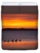 Swans In The Sunrise Duvet Cover