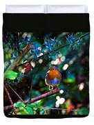 Sweet Robin Redbreast - Impressions Duvet Cover