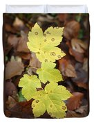 Sycamore Leaves Germany Duvet Cover