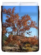 Sycamore Tree In Fall Colors Duvet Cover