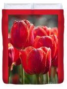 Symbolic Tulips Duvet Cover