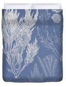 Symphocladia Linearis Duvet Cover