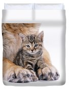 Tabby Kitten Between Large Dogs Paws Duvet Cover