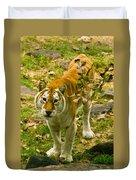 Tabby Tiger IIi Duvet Cover