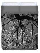 Tabebuia Tree 1 Duvet Cover