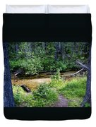 Tacoma Creek 1 Duvet Cover