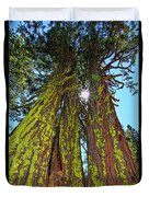Tahoe Trees - Lake Tahoe By Diana Sainz Duvet Cover