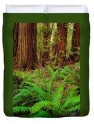 Tall Trees Grove Duvet Cover