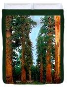 Tall Trees In Yosemite National Park Duvet Cover