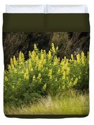 Tall Yellow Lupin Duvet Cover