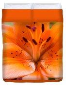 Tangerine Daylily Closeup Duvet Cover