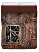 Tangled Up In Time Duvet Cover by Lois Bryan