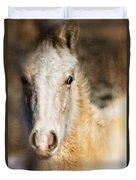 Taos Pony X Duvet Cover