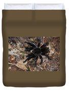 Tarantula Amazon Brazil Duvet Cover