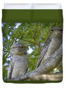 Tawny Frogmouths Duvet Cover