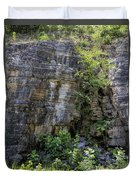 Tennessee Limestone Layer Deposits Duvet Cover