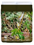Tennessee Warblers Duvet Cover