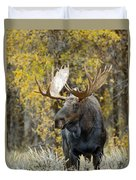 Teton Bull Moose Duvet Cover by Gary Langley
