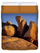 Texas Canyon Golden Boulders Duvet Cover