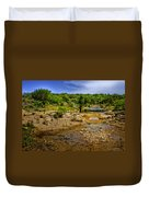 Texas Hill Country Stream Duvet Cover by David and Carol Kelly