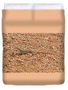 Texas Striped And Spotted Whiptail Lizard Duvet Cover