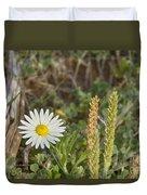 Texas Wildflowers V5 Duvet Cover