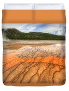 Textures Of The Grand Prismatic  Duvet Cover