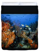 The Active Reef Duvet Cover