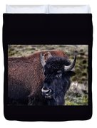The American Bison Duvet Cover