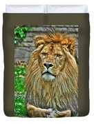 The Attentive Lazy Boy At The Buffalo Zoo Duvet Cover