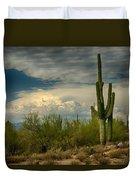The Beauty Of The Desert Southwest  Duvet Cover