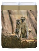 The Black-faced Vervet Monkey Duvet Cover