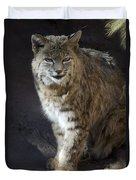 The Bobcat Duvet Cover