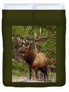 The Bull Elk Duvet Cover