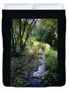 The Creek At Finch Arboretum 2 Duvet Cover