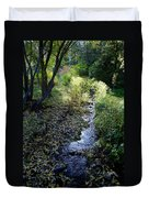 The Creek At Finch Arboretum Duvet Cover