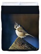 The Crested Tit In The Sun Duvet Cover