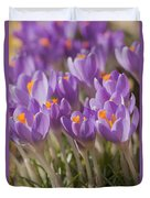 The Crocus Flowers  Duvet Cover
