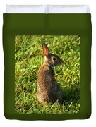 The Curious Rabbit Duvet Cover