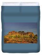 The Desert Aglow Duvet Cover
