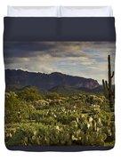 The Desert Is Wearing A Carpet Of Green  Duvet Cover