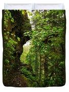 The Eagle Creek Trail Duvet Cover
