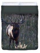 The Elegant Elk Duvet Cover