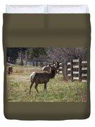 The Elk In Town Duvet Cover