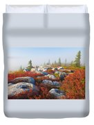 The Fog Clears At Dolly Sods Duvet Cover