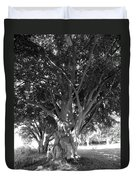 The Grandmother Tree Duvet Cover